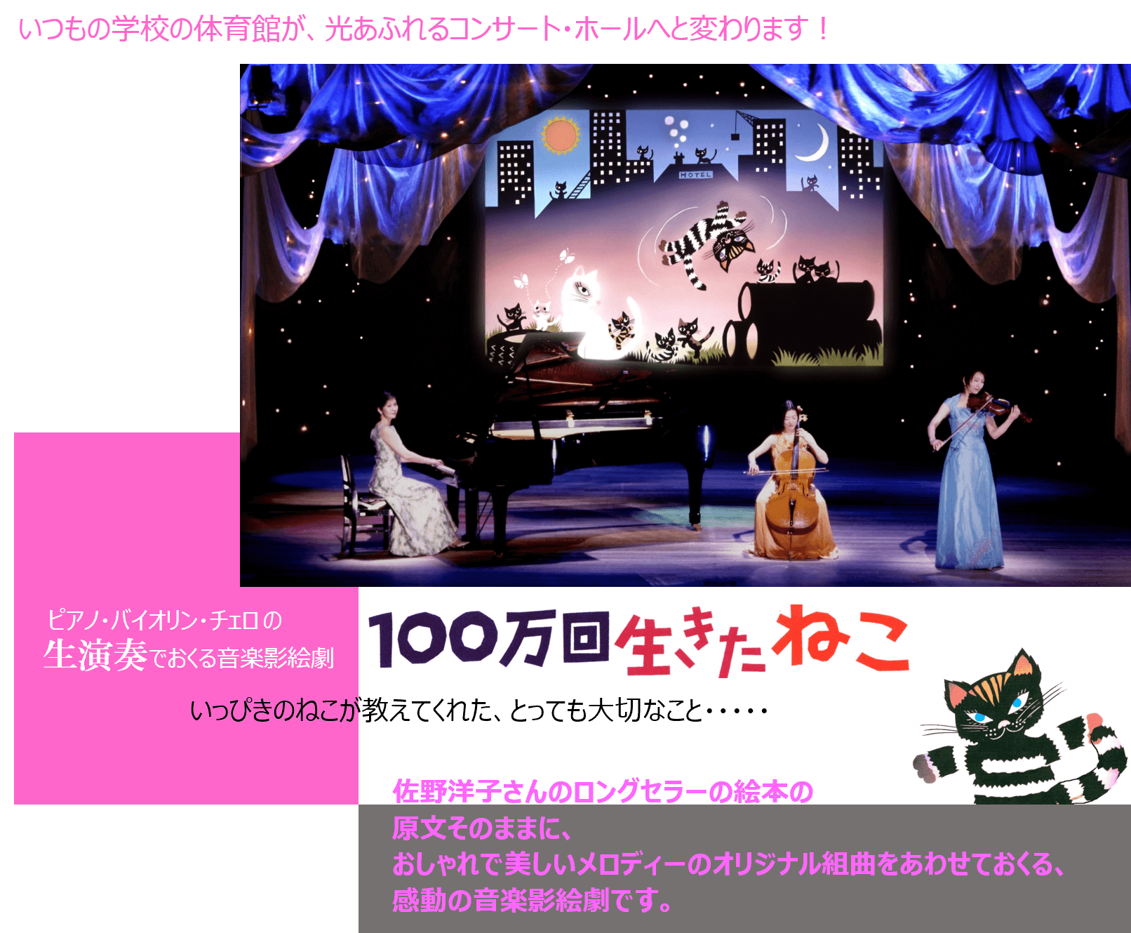 芸術鑑賞 音楽鑑賞  生演奏 影絵劇 100万回生きたねこ (1)